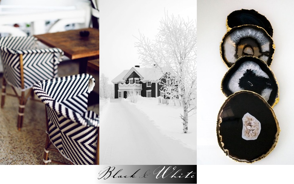 Color of the Month Black and White header